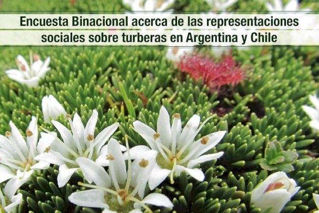 Lanzan una encuesta binacional que busca conocer las representaciones sociales sobre turberas en Argentina y Chile
