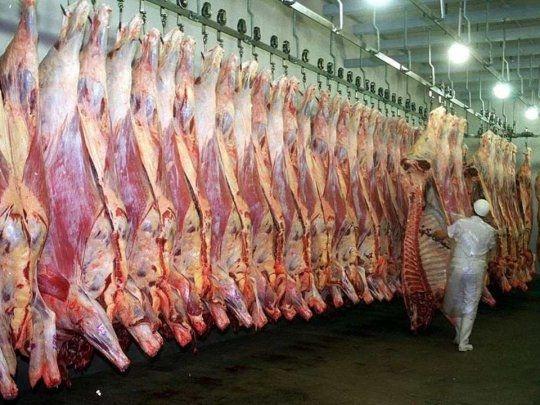 El Gobierno Nacional suspendió por 30 días las exportaciones de carne vacuna