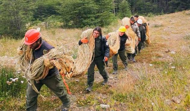 La Secretaría de Ambiente realizó la primera actividad de rehabilitación en la Reserva Provincial Río Valdéz