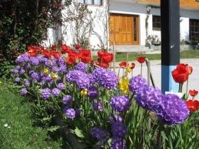 Destacan a Margarita Canga por su compromiso en embellecer Ushuaia