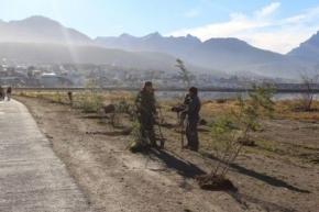 El Municipio realiza trabajos de forestación y multiplicación de especies
