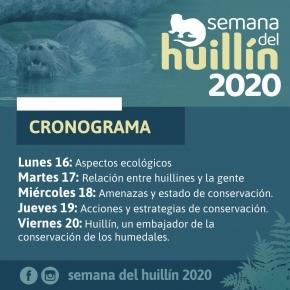 Especialistas en conservación de especies celebran una semana en honor al Huillín