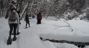 """Melella pidió a los fueguinos """"apropiarse y disfrutar de las actividades regionales de invierno"""""""