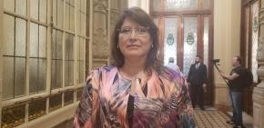 Yutrovic destacó la realización de la primera sesión remota de la Cámara de Diputados